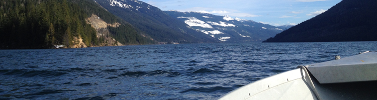 Fishing in Revelstoke